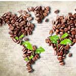 Kaffeeanbau & Umwelt